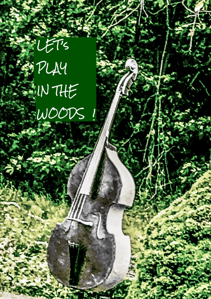 A guitar next to a forest Description automatically generated
